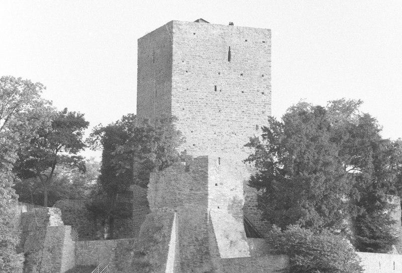 Hardtburg, Verließ des Hardter Turms